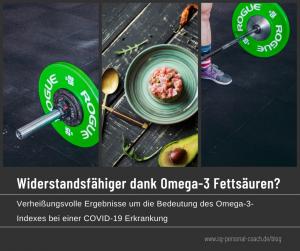 virenschutz omega 3 blogbeitrag bild